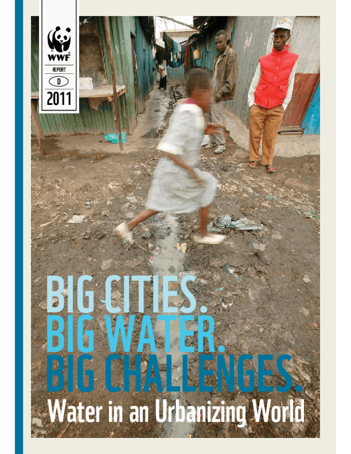 Big Cities. Big Water. Big Challenges: Water in an Urbanizing World.