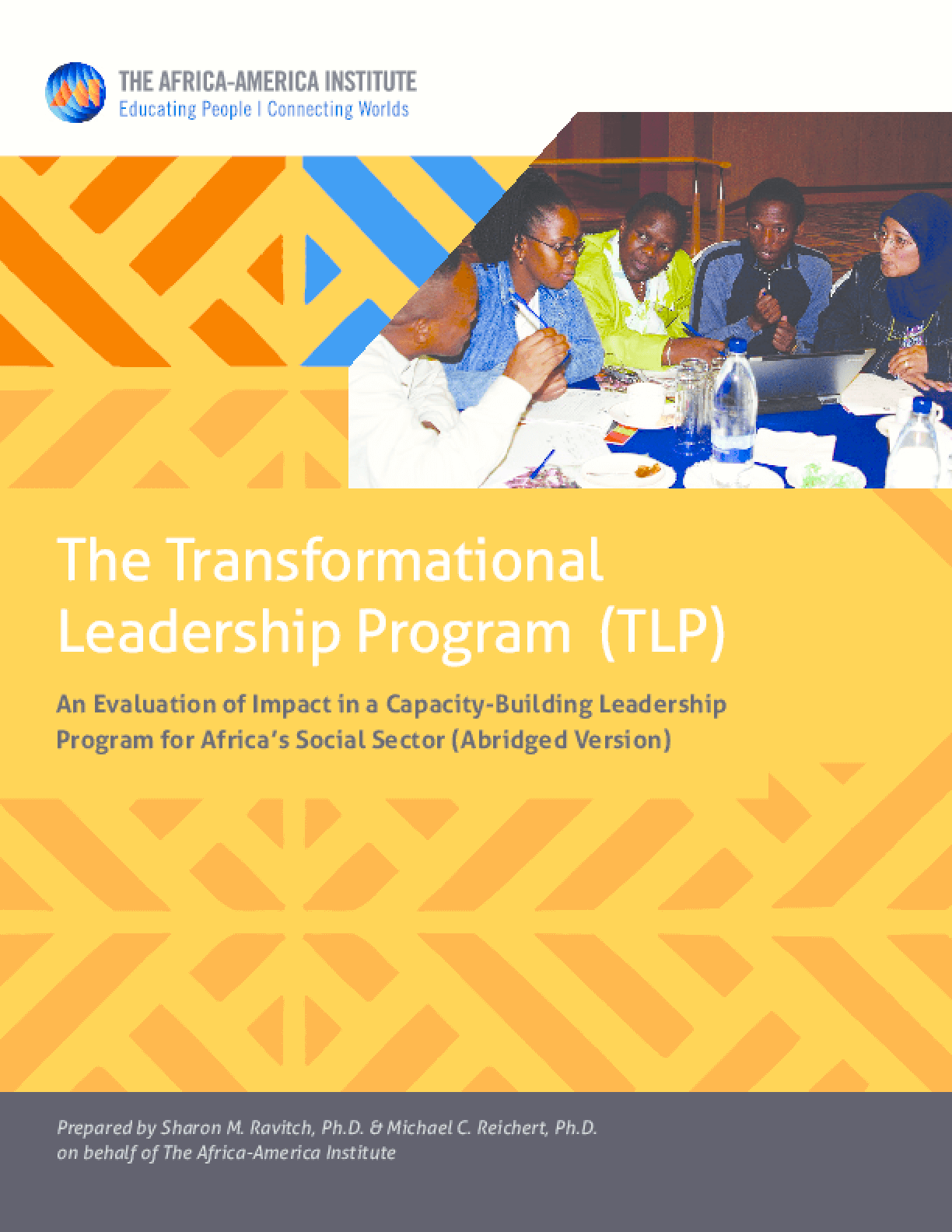 The Transformational Leadership Program (TLP): An Evaluation of Impact in a Capacity-Building Leadership Program for Africa's Social Sector (Abridged Version)