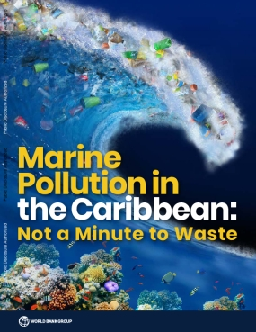 Marine Pollution in the Caribbean: Not a Minute to Waste